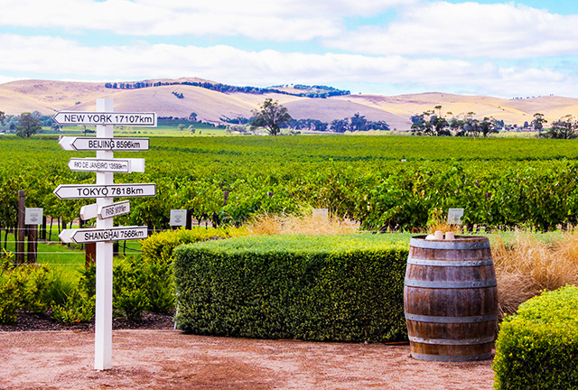Barossa Valley Wine Tours In Limousine From Adelaide